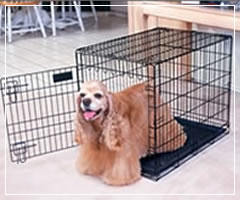 Foldable Animal Cages